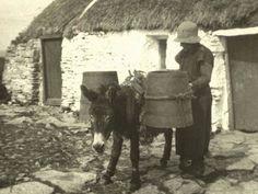 Donegal on Vimeo Donegal Cottages, Irish Cottage, Irish Celtic, Ireland Travel, Heaven On Earth, Abandoned, Nature, Horses, History