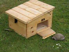 tortoise hut - Google Search