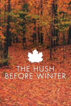 November is the Hush before Winter