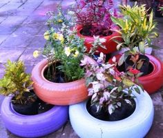 Annually about 40 million tires are thrown away, each year and just dumped in Streams, Rivers, Ocean and Landfills But we can turn Junk. Tire Garden, Garden Planters, Unique Gardens, Beautiful Gardens, Weed Barrier, Cactus Types, Tyres Recycle, Reuse, List Of Flowers
