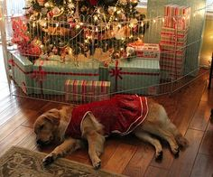 Idea for Christmas Tree gate baby/pet proofing