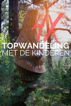 Top 4 wandelingen met de kids - Limburg-Tips - Bestegram Hiking With Kids, Travel With Kids, Family Travel, Beautiful Places In The World, Top Of The World, Staycation, Where To Go, Day Trips, Places To See