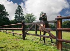 Quality wooden portal specially arranged in a for . Quality wooden gate specially a