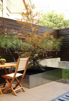 A long planter that sits atop a concrete retaining wall is filled with grasses, softening the lines of the fence. A modern steel container planted with a birch tree offers another touch of nature.
