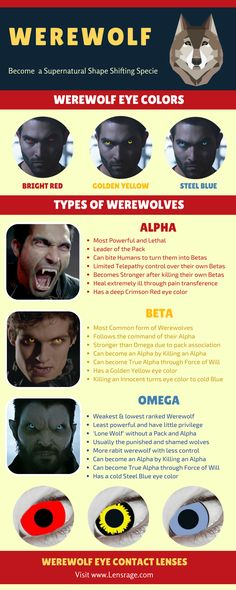 Werewolf Contact Lenses imitate actual wolf eyes, and can make you appear spooky, creepy or just fantasy like as the case may be. Werewolf Eyes, Werewolf Girl, Werewolf Makeup, Werewolf Hunter, Teen Wolf Eyes, Eye Contact Lenses, Lenses Eye, Medusa, Wolf Colors