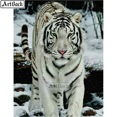 le tigre blanc Plus Snow Tiger, Pet Tiger, Big Cats, Cats And Kittens, Cute Cats, Animals And Pets, Baby Animals, Cute Animals, Beautiful Cats