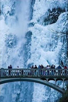 Bridge at Multinomah Falls Oregon in Winter #frozen #waterfall
