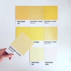 Are you looking for the pefect piece to showcase your love of Pantone? Shop our collection of home accessories to add a splash of color to your workspace! Pantone Colour Palettes, Pantone Color, Yellow Mirrors, Mellow Yellow, Pastel Yellow, Mood, Consumer Products, Color Theory, Basic Colors