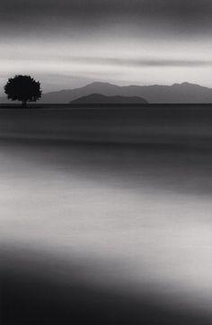 Michael Kenna, 'Biwa Lake Tree, Omi, Honshu, Japan,' 2001, Weston Gallery