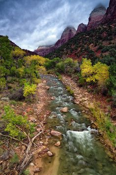 Zion National Park, Utah; photo by Jean Day