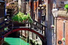 #Venice  - #TBT 7 weeks ago today #travel