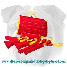 #French #Linen #English #Bulldog #Set of #Tugs for #Training $84.65 | www.all-about-english-bulldog-dog-breed.com