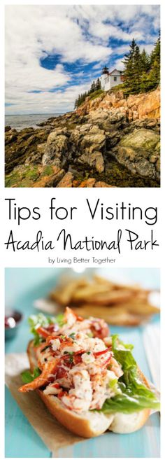Tips for eating, seeing, and staying in Maine's gorgeous Acadia National Park.
