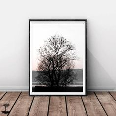 Infinite Art, Modern Wall Decor, Landscape Prints, Tree Branches, Large Prints, Printable Art, Wall Art Prints, Art Photography, Birds
