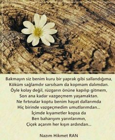 Nazım Hikmet.... Deep Words, True Words, Carl Sagan, Cool Words, Karma, Affirmations, Qoutes, Poems, Feelings