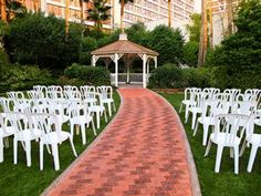 The West Lawn at the Flamingo --- a dream location (1 of many)