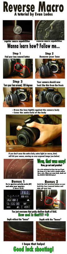 Reverse Macro Some people have never even heard about this technique. I made this tutorial this afternoon in hopes to answer any questions. Photography Cheat Sheets, Photography Basics, Photography Lessons, Photoshop Photography, Photography Equipment, Photography Editing, Photography Tutorials, Photography Business, Macro Photography