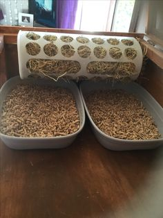 Rabbit hay feeder and litter tray diy Rabbit Litter, Rabbit Toys, Bunny Bunny, Bunny Rabbits, Hay Feeder, Rat Cage, Guinea Pigs, Family Life, Dog Bowls