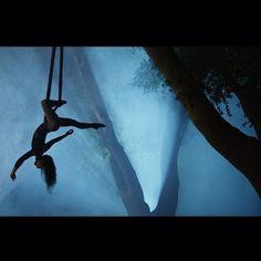 Beautiful shoot of aerial hammock