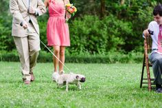 pug down the aisle! | Ashleigh Jayne
