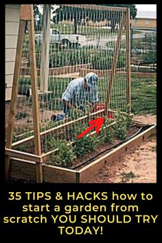 Creative Garden Hacks & Tips That Every Gardener Should Know garden ideas, gardening ideas, gardening for beginners, gardening design, gardening tools, gardening hacks, gardening and landscape, gardens and gardening ideas Growing Herbs, Growing Vegetables, Gardening For Beginners, Gardening Tips, Container Gardening Vegetables, Vegetable Gardening, Easy Garden, Garden Ideas, Drought Resistant Plants