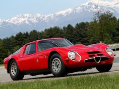 Alfa Romeo TZ2 - better looking than a 250gto - debate!