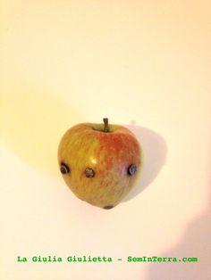 La mela chiodata aiuta nelle carenze di ferro