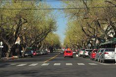 Sinais da primavera... Mendoza