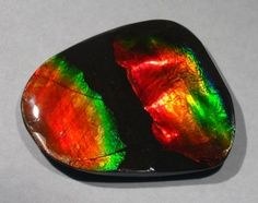 16.65 ct Canadian Ammolite; opal-like organic gemstone It is made of the fossilized shells of ammonites