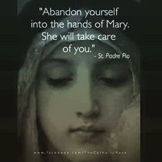 Padre Pio on the care of Our Lady. Catholic Quotes, Catholic Prayers, Catholic Saints, Roman Catholic, Hail Mary Prayer Catholic, Saint Mary Catholic, Blessed Mother Mary, Blessed Virgin Mary, Kingdom Of Heaven
