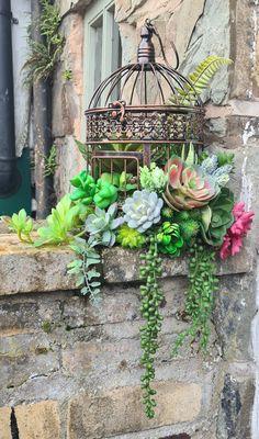 Garden Art, Home And Garden, Vintage Birdcage, Faux Succulents, Succulent Arrangements, Bird Cage, Yard, Future, Wall Art