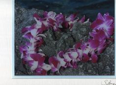 "Susan Benay 11 x14 Maui Dreams ""Aloha from Hawaii"" Art Photograph Double Matted"