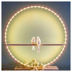 Lampe en hêtre massif avec un couple d'hirondelles en biscuit de porcelaine - diamètre 60 cm Artisanal, Biscuit, Couple, Architecture, Raw Wood, Porcelain, Light Fixture, Arquitetura, Couples