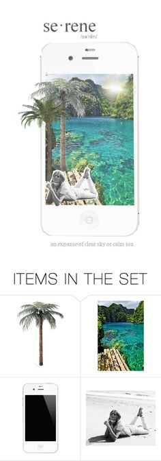 """""""serene"""" by allurings ❤ liked on Polyvore featuring art, tropical, Collage, relax and chill"""