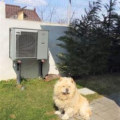 #nibe #heatpump #pompadecaldura Heat Pump, Heat Pump System