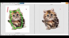 Création couverture ou cover Ebook Le chat pour les nuls avec Youzign