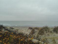 #StængehusStrand Beach, Water, Outdoor, Water Water, Outdoors, Aqua, Outdoor Games, Outdoor Life