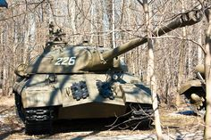 IS-3 - Bosque