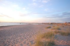 Midnight sun at the beach in Kalajoki, North Ostrobothnia. My family home regions.