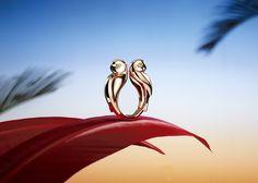 Cartier Digital - Advertising - Igor Ouvaroff - Set designer - Carole Lambert