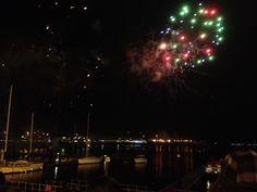 Fireworks Cardiff Bay December 2013 www.callofthewild.co.uk
