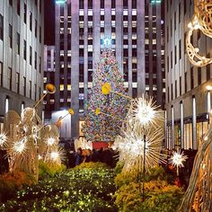 Christmas in NYC