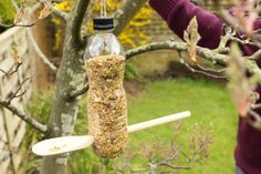 DIY Bird Feeders - Roundup of recycled crafts - Savvy Sassy Moms