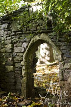Ruins in Castle Park, Bristol.