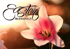50 Most Wonderful Easter Religious Wish Photos And Images Spring Pictures, Easter Pictures, Easter Religious, Christian Images, What A Wonderful World, Happy Easter, Blessed, Instagram Posts, Blessings
