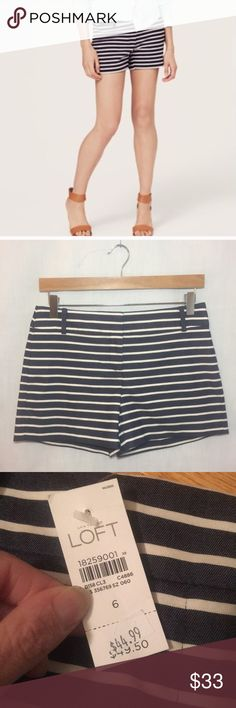 Loft riviera striped shorts 6 navy blue nautical Brand new with tags LOFT Shorts