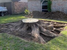 How would you like to have to remove this tree stump?