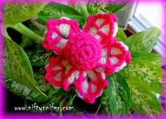 Funky Flower Fridays Week #2 Free Motif Crochet Pattern by Niftynnifer ~ free pattern