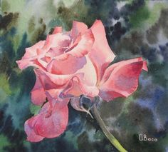 Pink Rose ORIGINAL WATERCOLOR Flower Floral Pink by OlenaBacasArt, $35.00