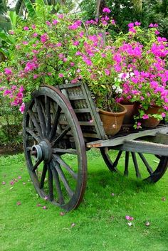 cart with full of flowers by hoadalat on Flickr..